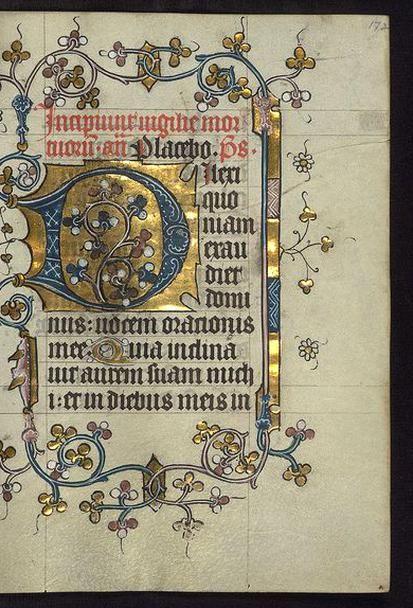 Diagram Illuminated Manuscript Doffinnes Hours Floral Decoration U2026