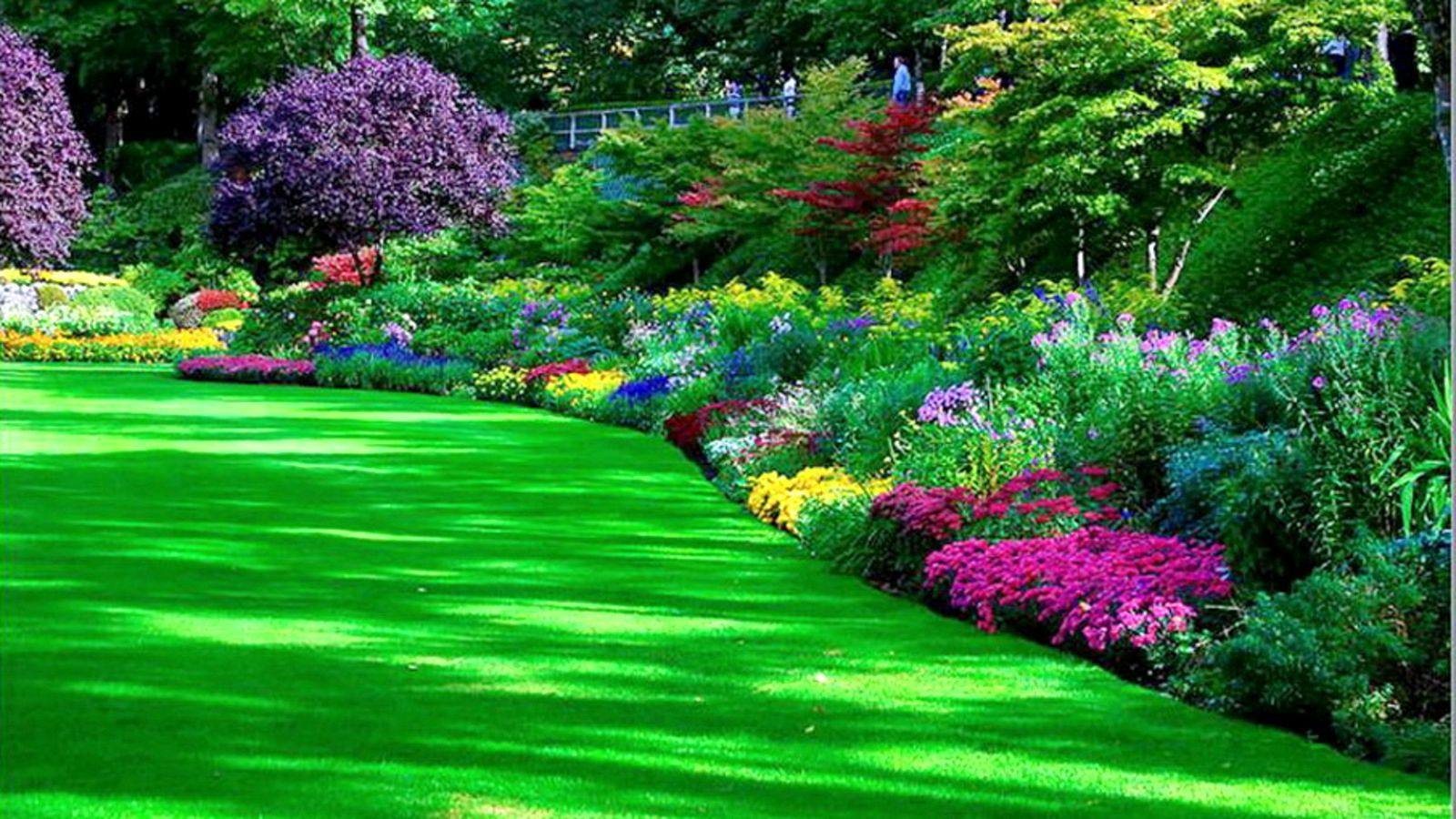 Garden Images Hd Free Download Garden Park HD Pretty