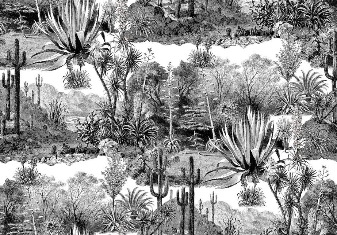Tendance décoration cactus : tendance cactus – Elle Décoration