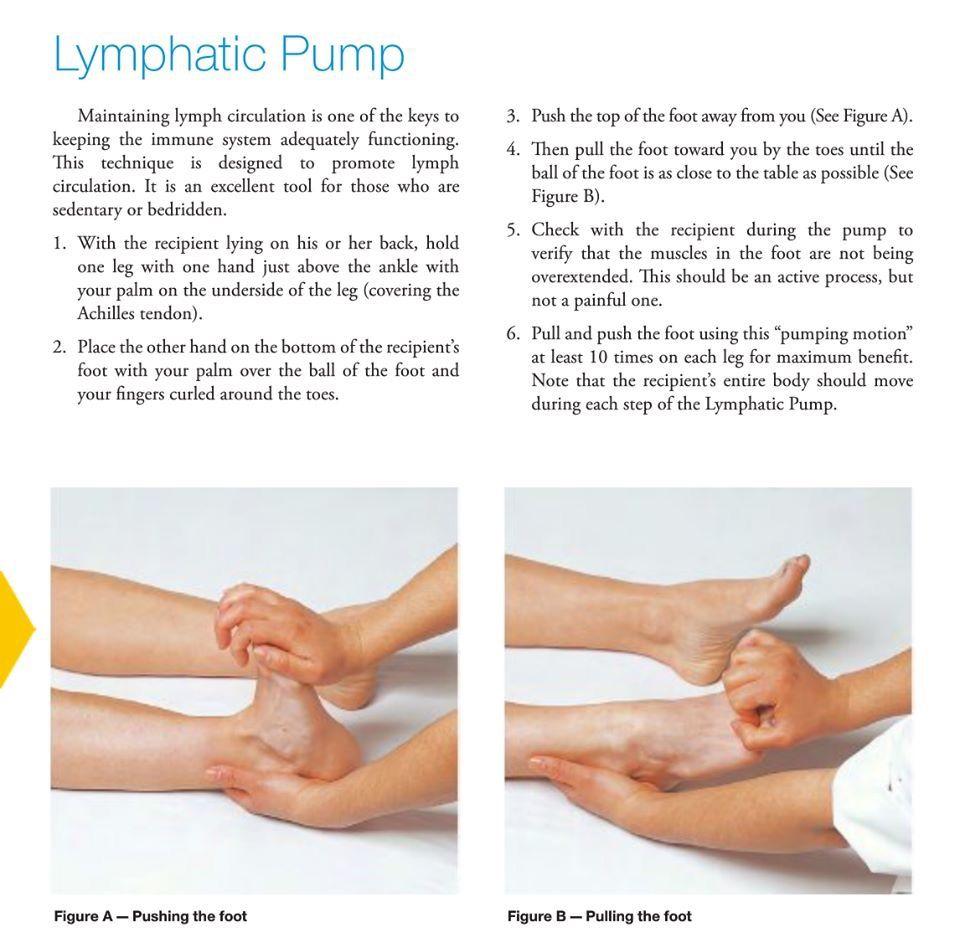 Pin by Susan Eddy on Essential Oils   Lymph massage ...