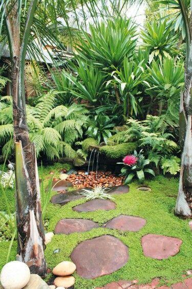 top tropical backyard garden ideas