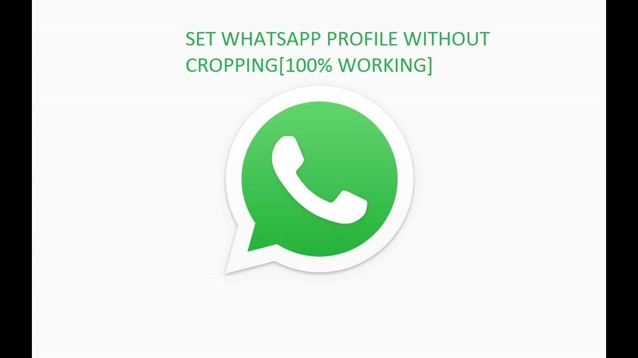 Whatsapp Full Size Profie Picture Without Cropping Dp Without Crop