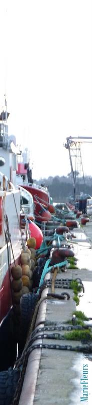 Brochettes de bateaux de pêche. Port de Keroman