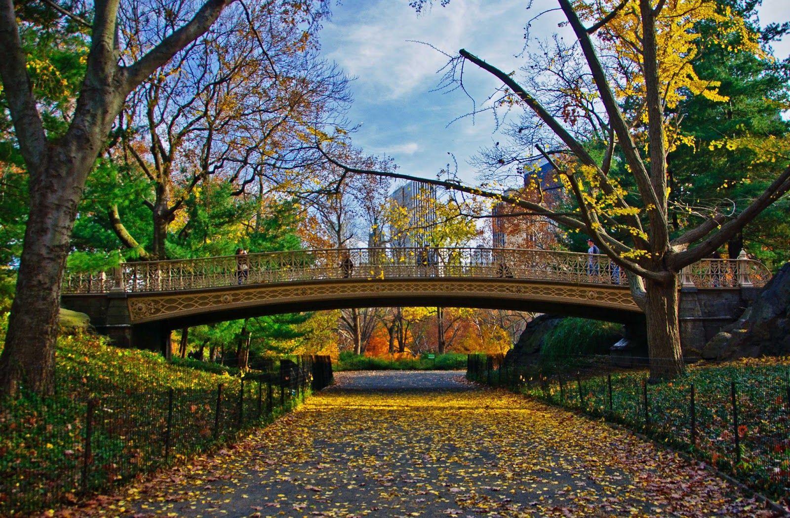 central park nova york primavera - Pesquisa Google   Parque urbano ...