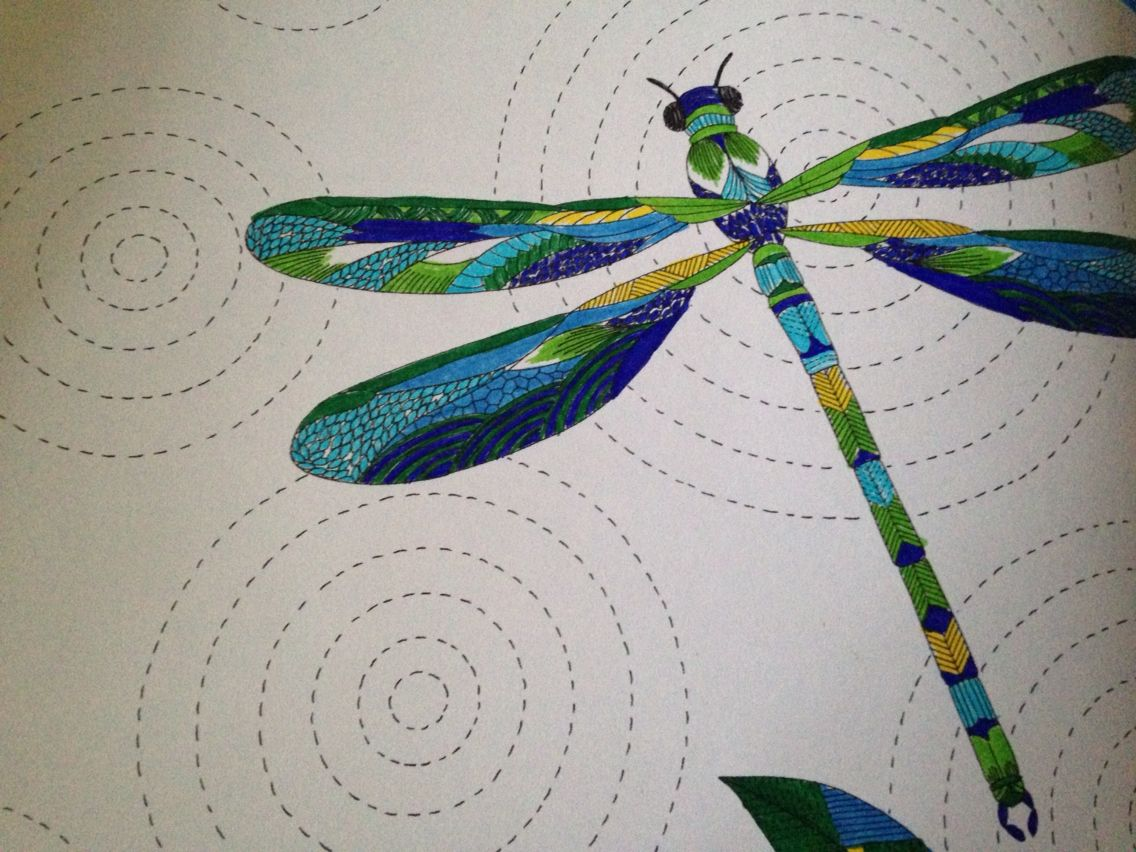 This Colouring Book Adventure Is Stunning By Millie Marotta