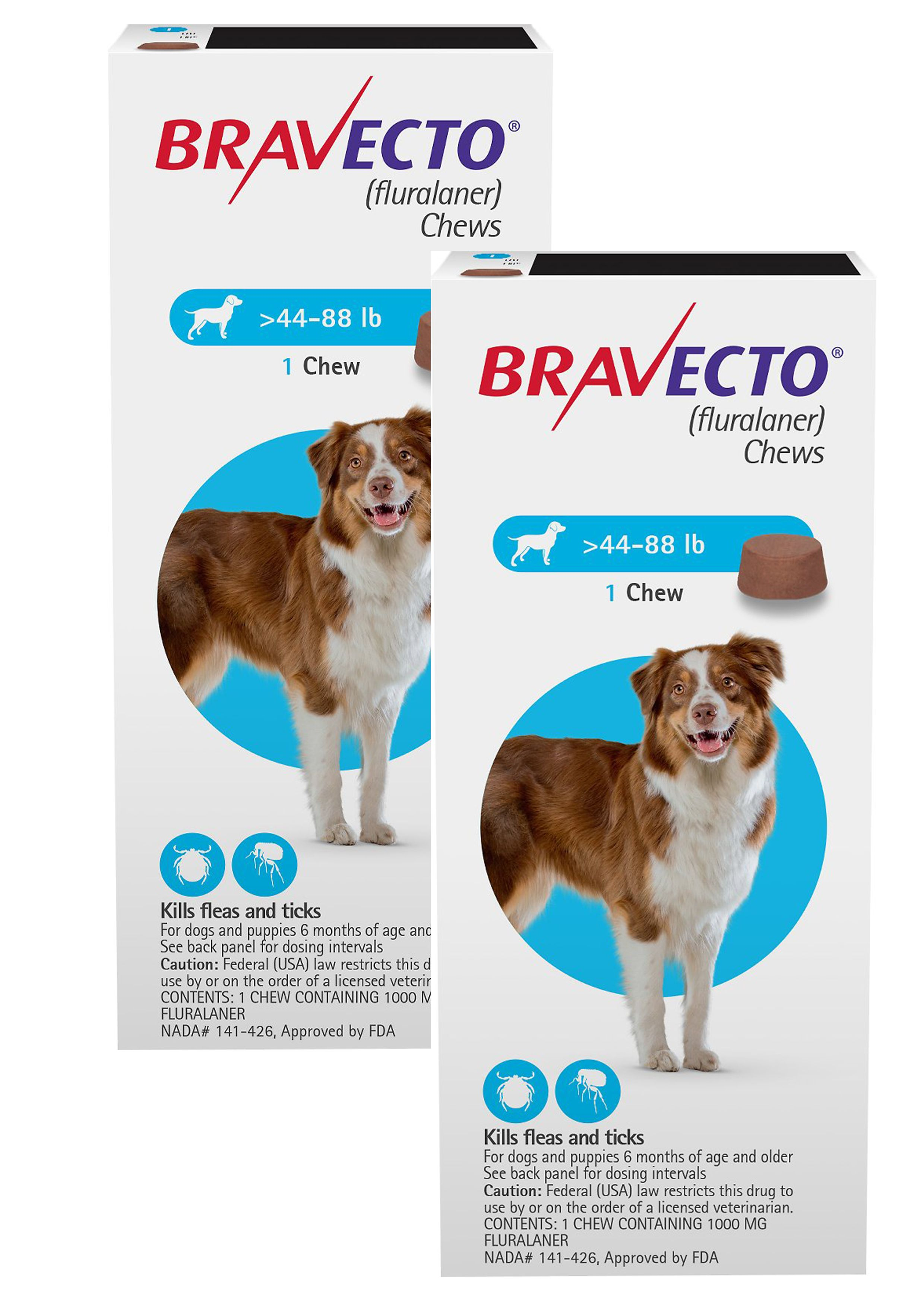 Bravecto for large dogs 4488lbs blue easyvetsupplies
