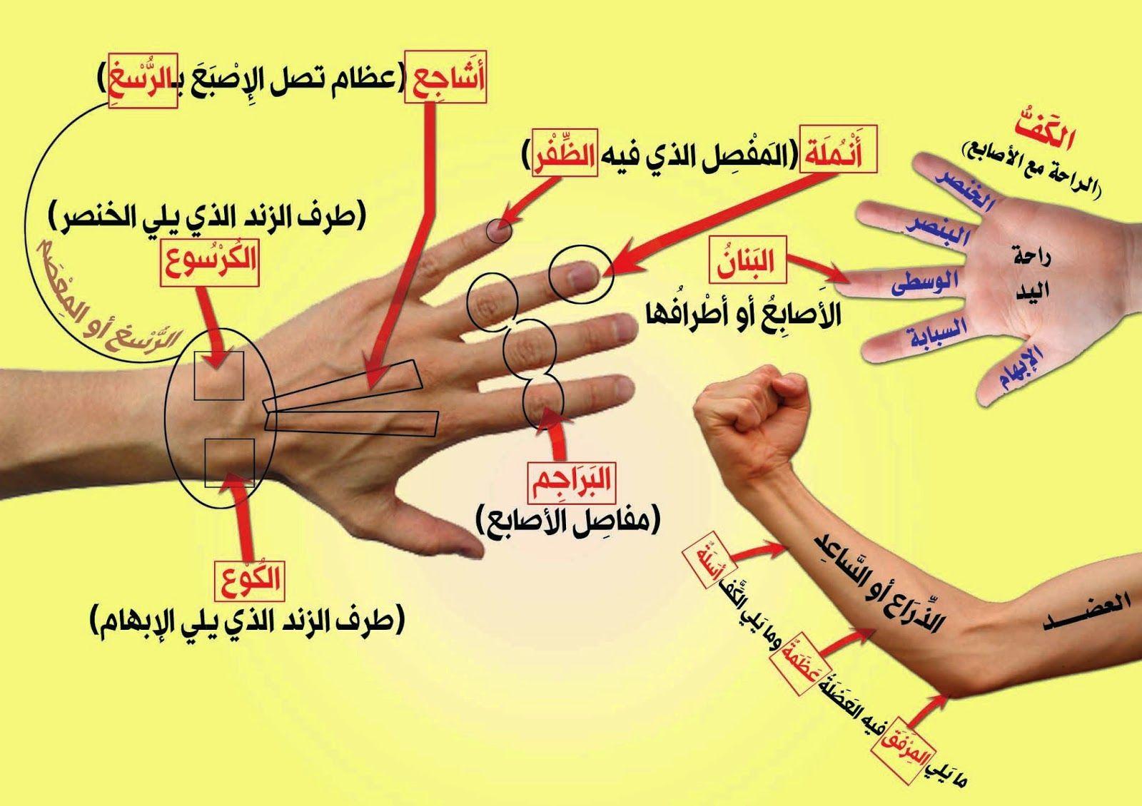 وليد إبراهيم دره أبوعبد الرحمن Blog Posts Blog Islamic Quotes