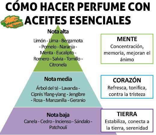 perfumes como hacer