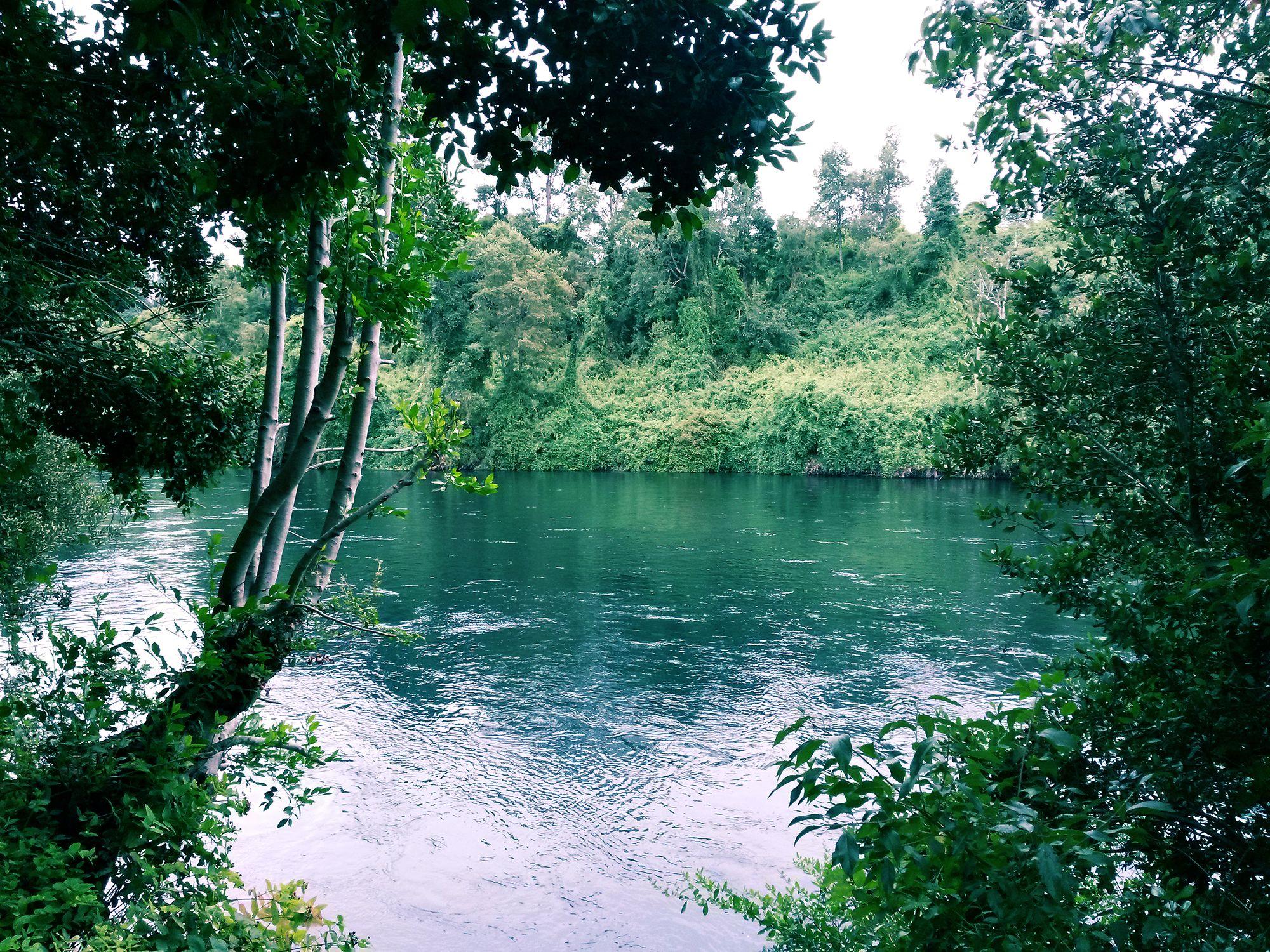 Río Bueno,  XIV Región de Los Ríos.