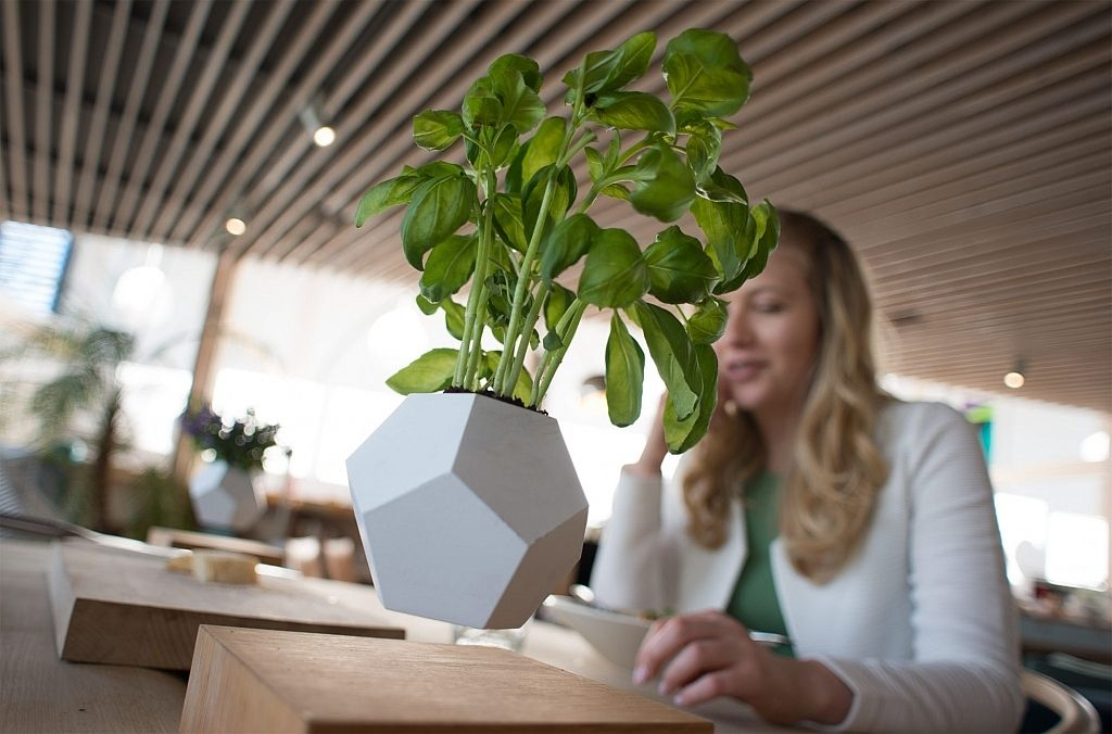 lyfe-the-zero-gravity-planter-gessato-3
