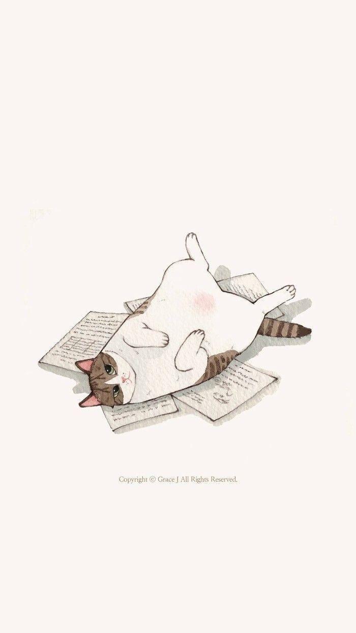 Wallpaper con gatos