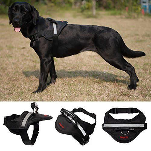 Big Dog Soft Reflective No Pull Red Harness Size Xl 36 46inch