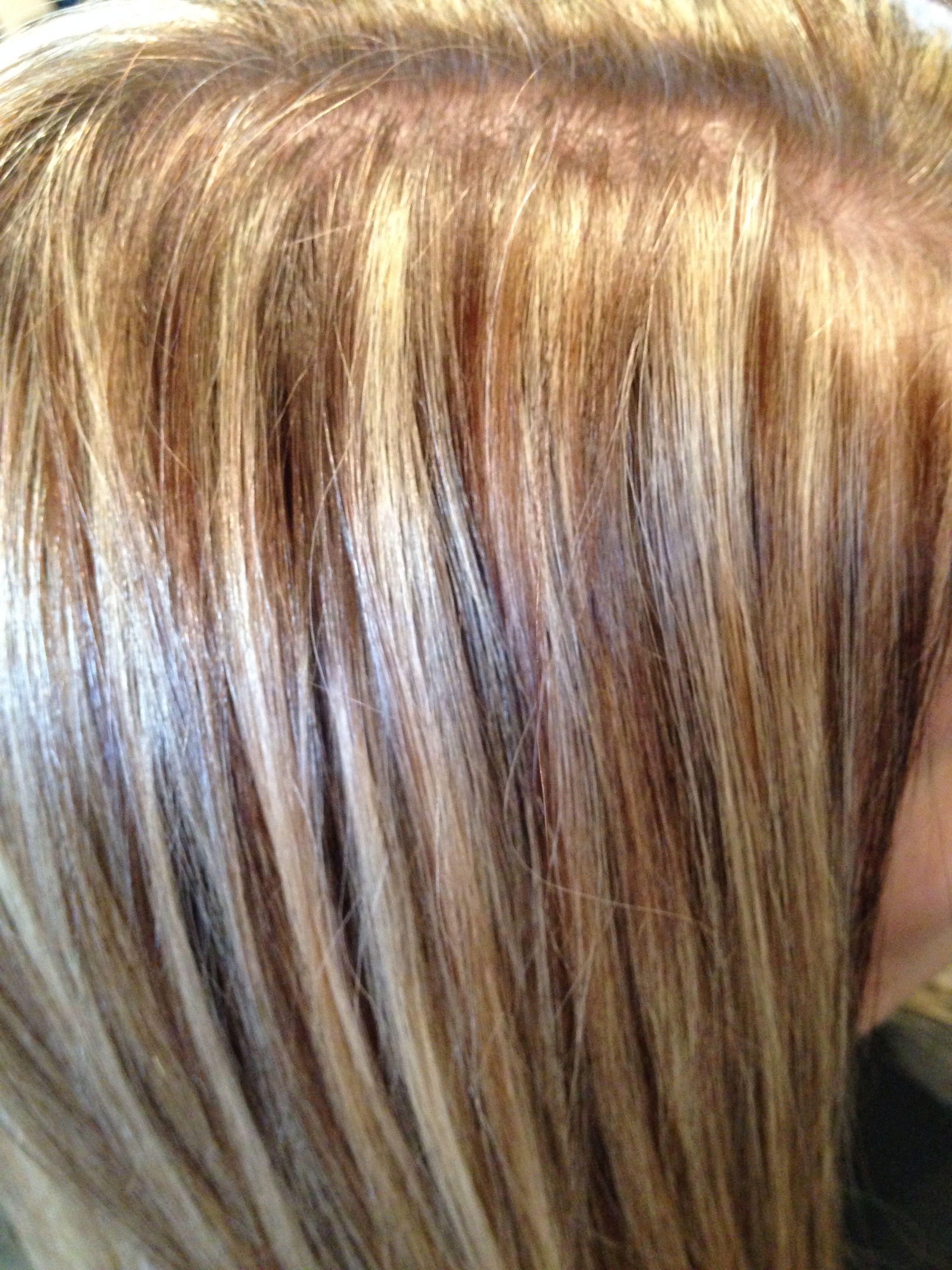 Pin By Cindy Jantzen On Beauty Board Short Hair Color Hair Styles Hair Studio