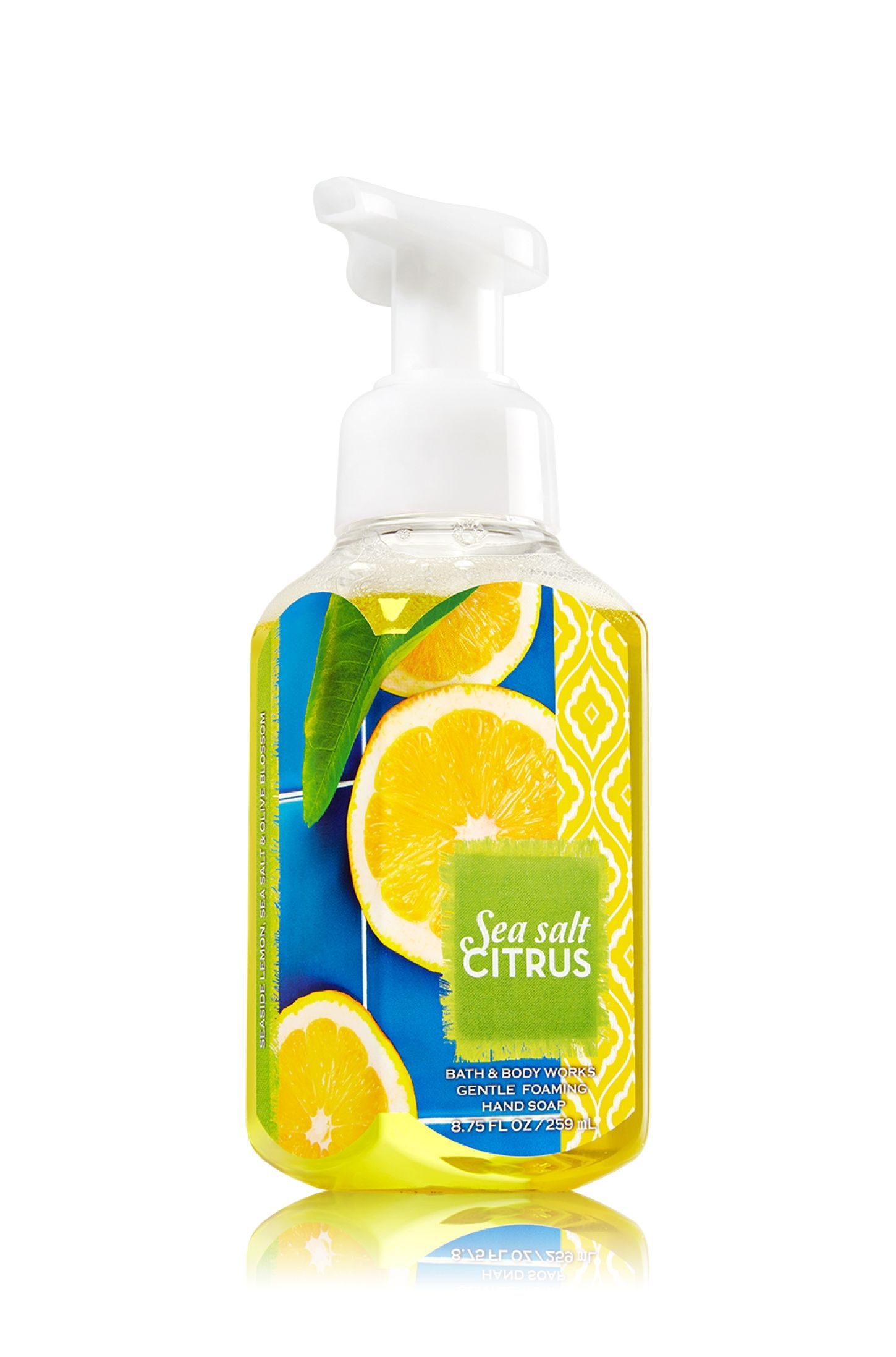 Sea Salt Citrus Gentle Foaming Hand Soap Soap Sanitizer Bath