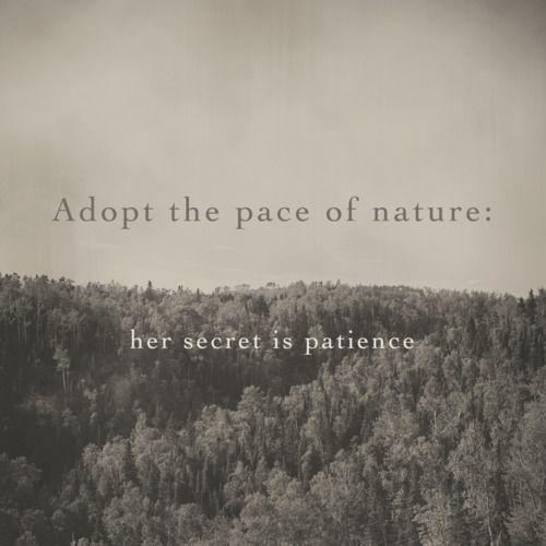 from nature ralph waldo emerson pdf