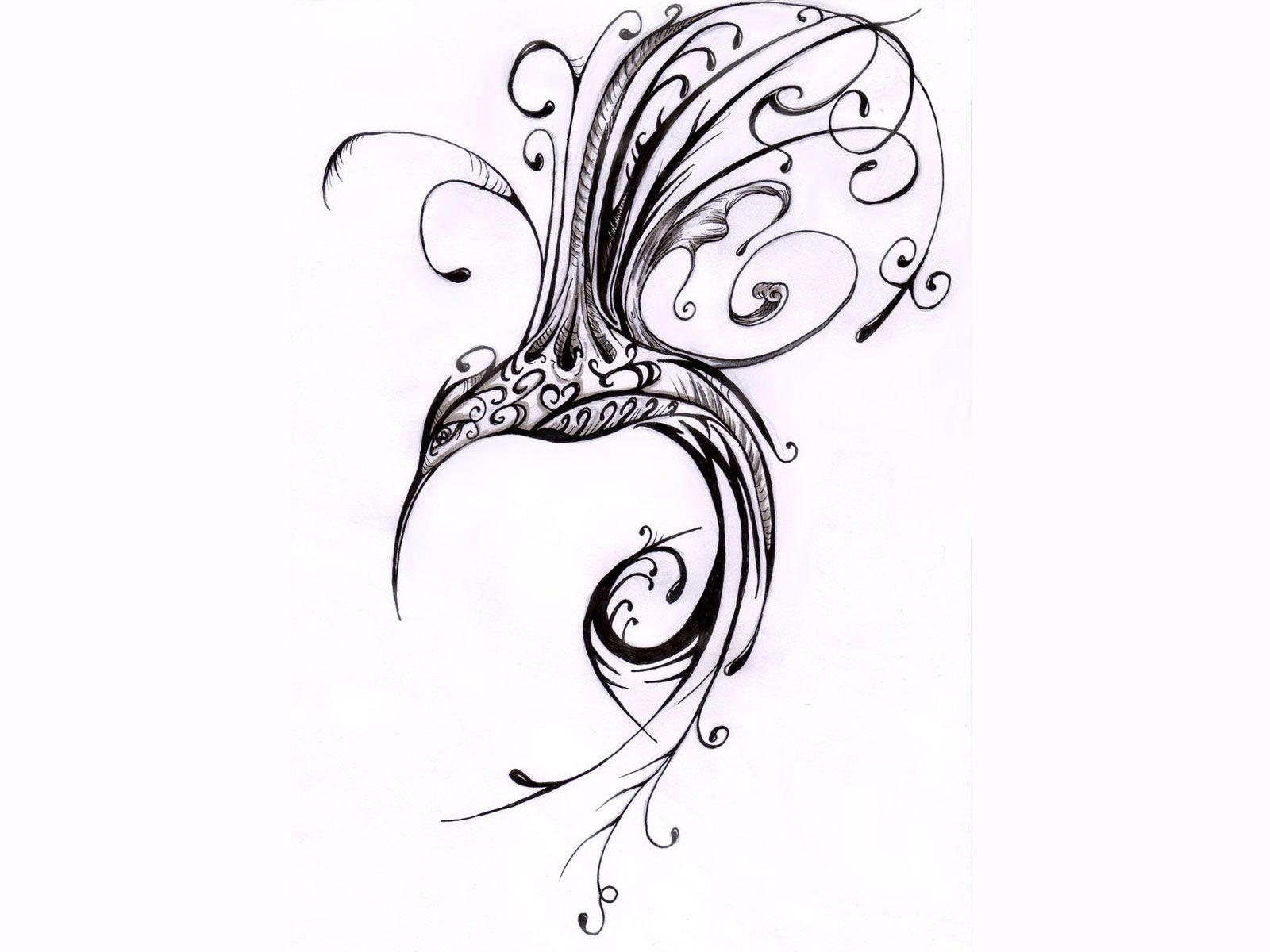 scrolled hummingbird tatoo hummingbird drawings tattoos art i