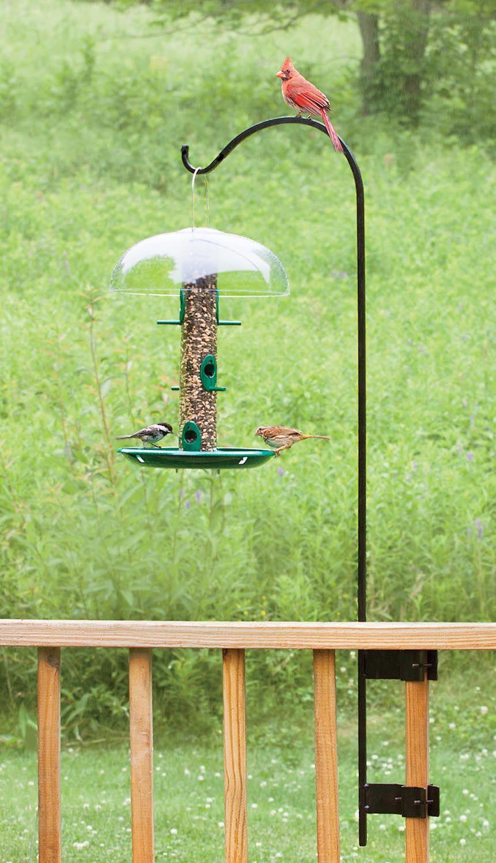 me deck decks bird soef feeder feeders hangers for