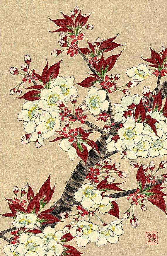 Japanese flowers art prints, floral art, Blooming Sakura Cherry ...