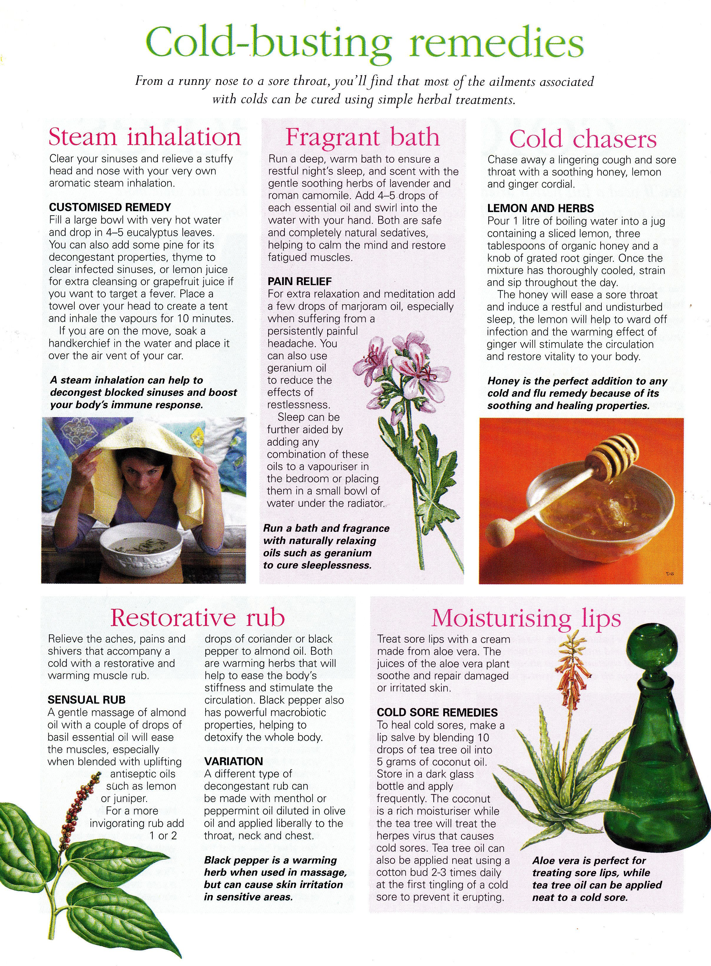 Herbs:  Cold Busting #Remedies.                                                                                                                                                     More