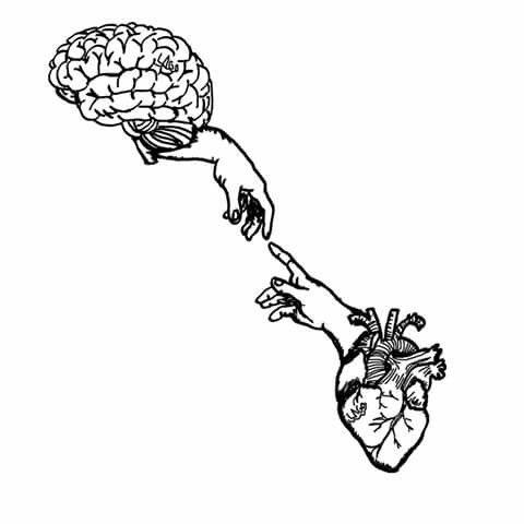 """""""Na tênue linha entre razão e emoção, o coração mente e o cérebro pulsa"""" Daniel 6-3-17"""