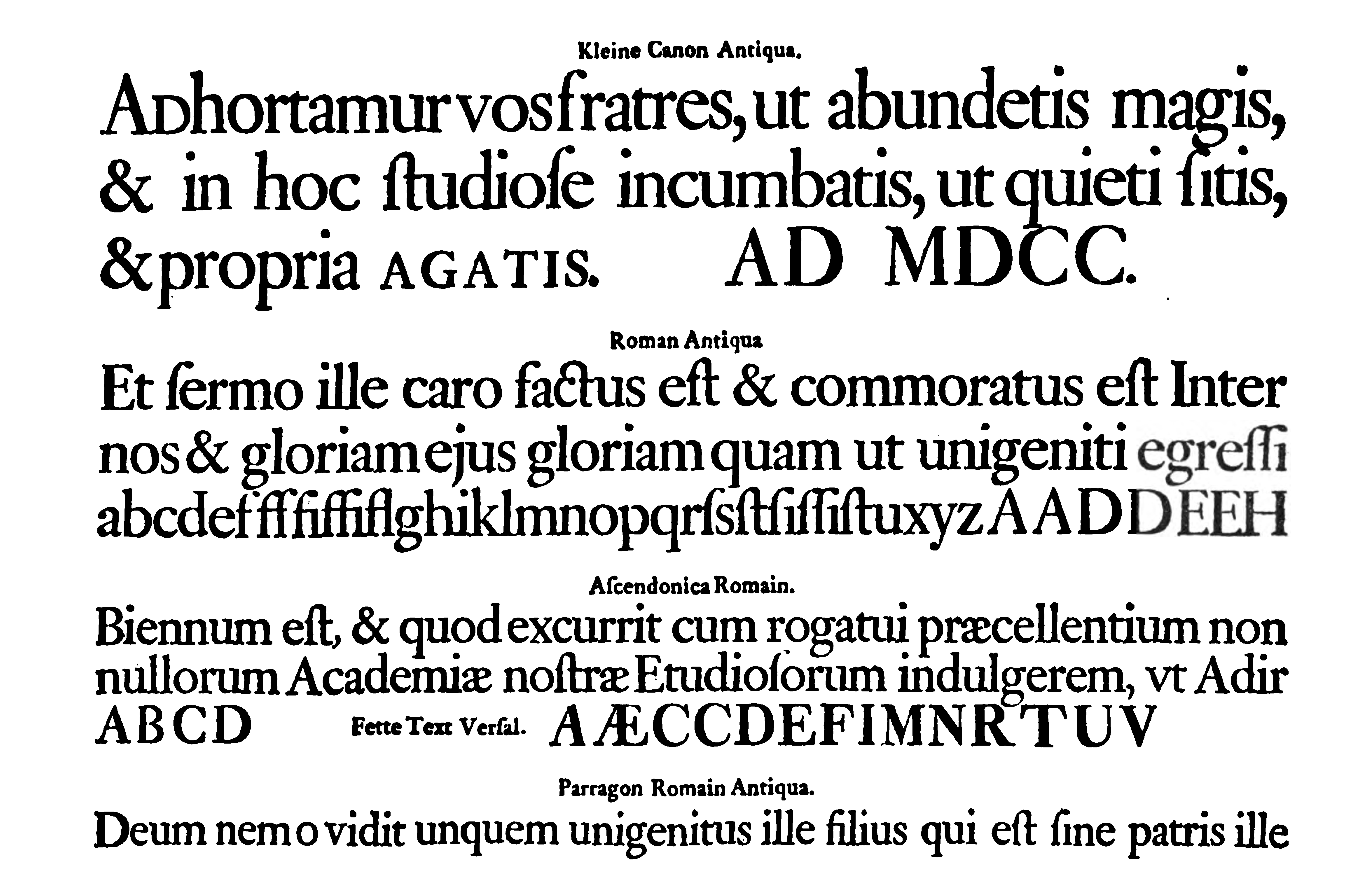 Ehrhardt_specimen.png (7515×4870)