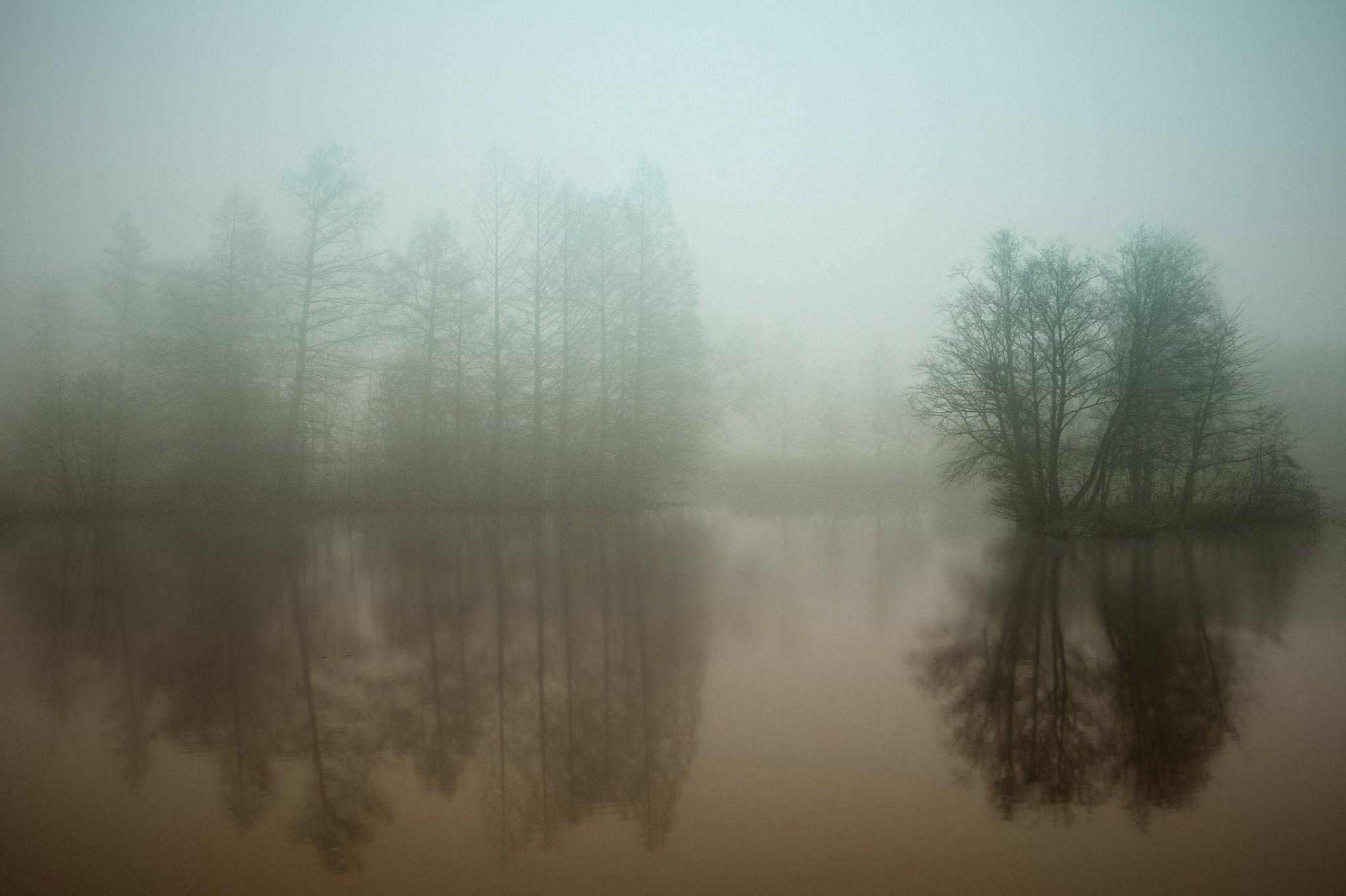 Winter elegy by Katalin Gerencsér on 500px