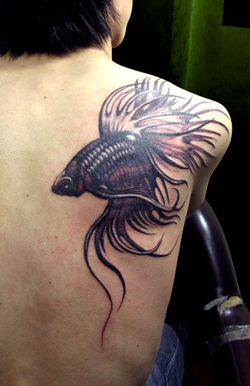 1bdc1ddfde163 fish tattoo designs | and famous Betta fish tattoo also called Siamese  fighting fish tattoo .