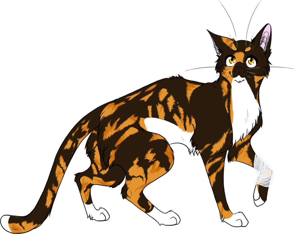 Warrior Cats 010 Spottedleaf By Kuroi Hitsuji Warrior Cats