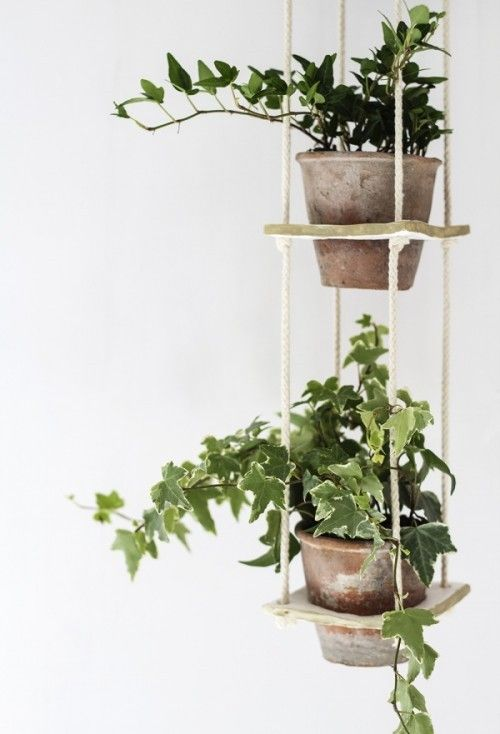 Diy 3 Tiered Hanging Planter Diy Planters Plants Home Decor