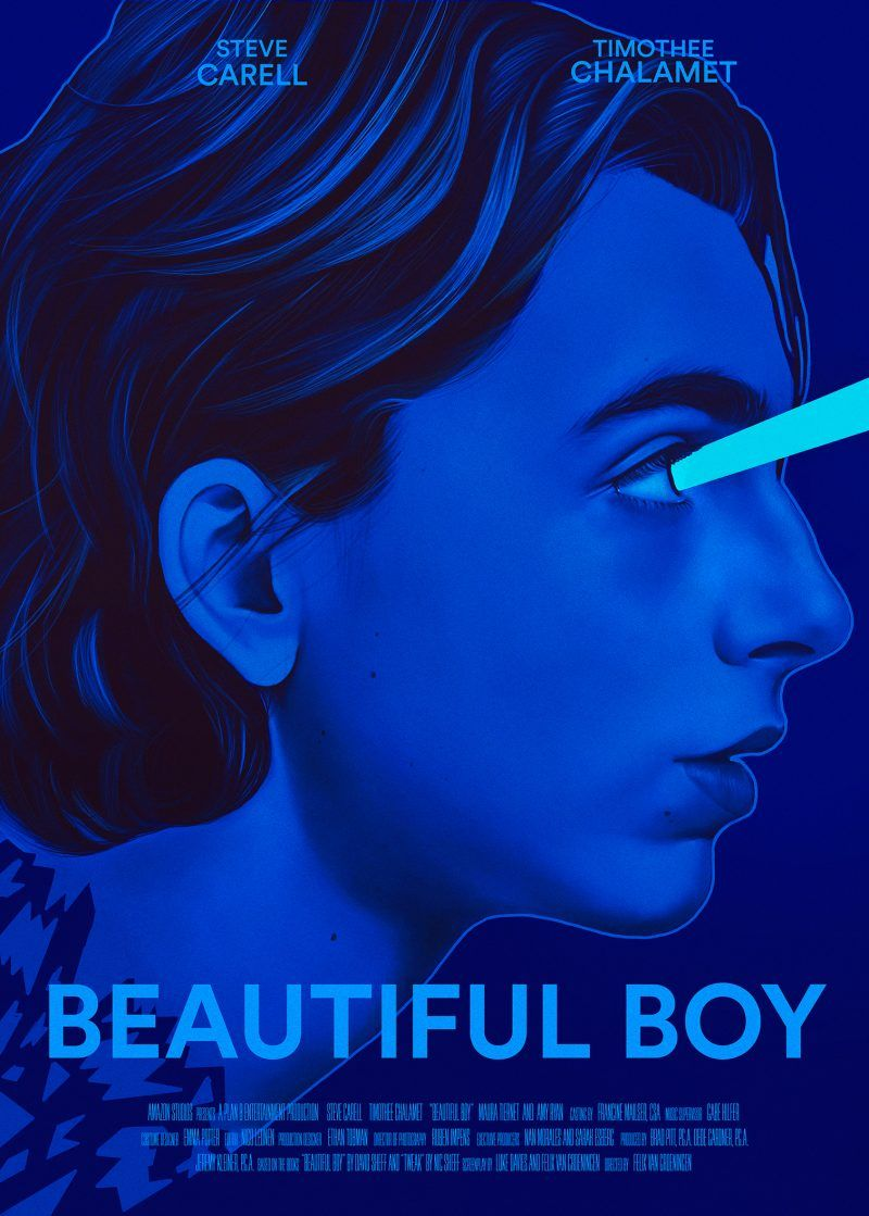 Beautiful boy 2018 800 x 1119