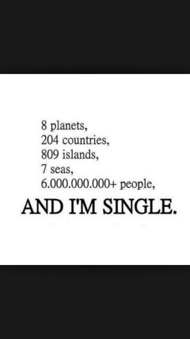 Single And Ready To Mingle Quotes : single, ready, mingle, quotes, Single, Ready, Mingle, Quotes, Words