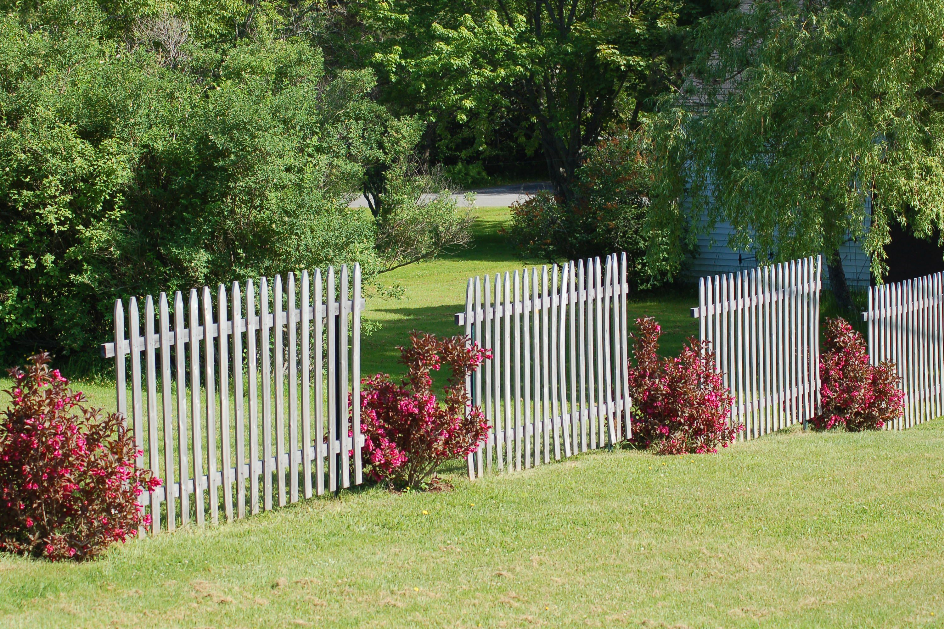 With Landscaping Ideas Along Fence On Fence Landscape Design Ideas