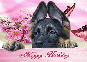 Puppy Happy Birthday 270 Personalised Birthday Card German