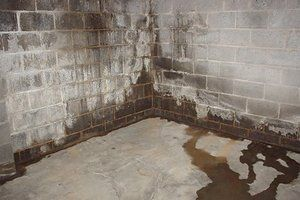 Photo of Waterproofing Basement Walls: Costs and Options