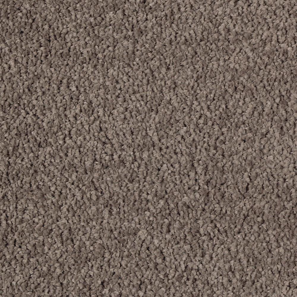 LifeProof Carpet Sample Windfall (S) Color Java