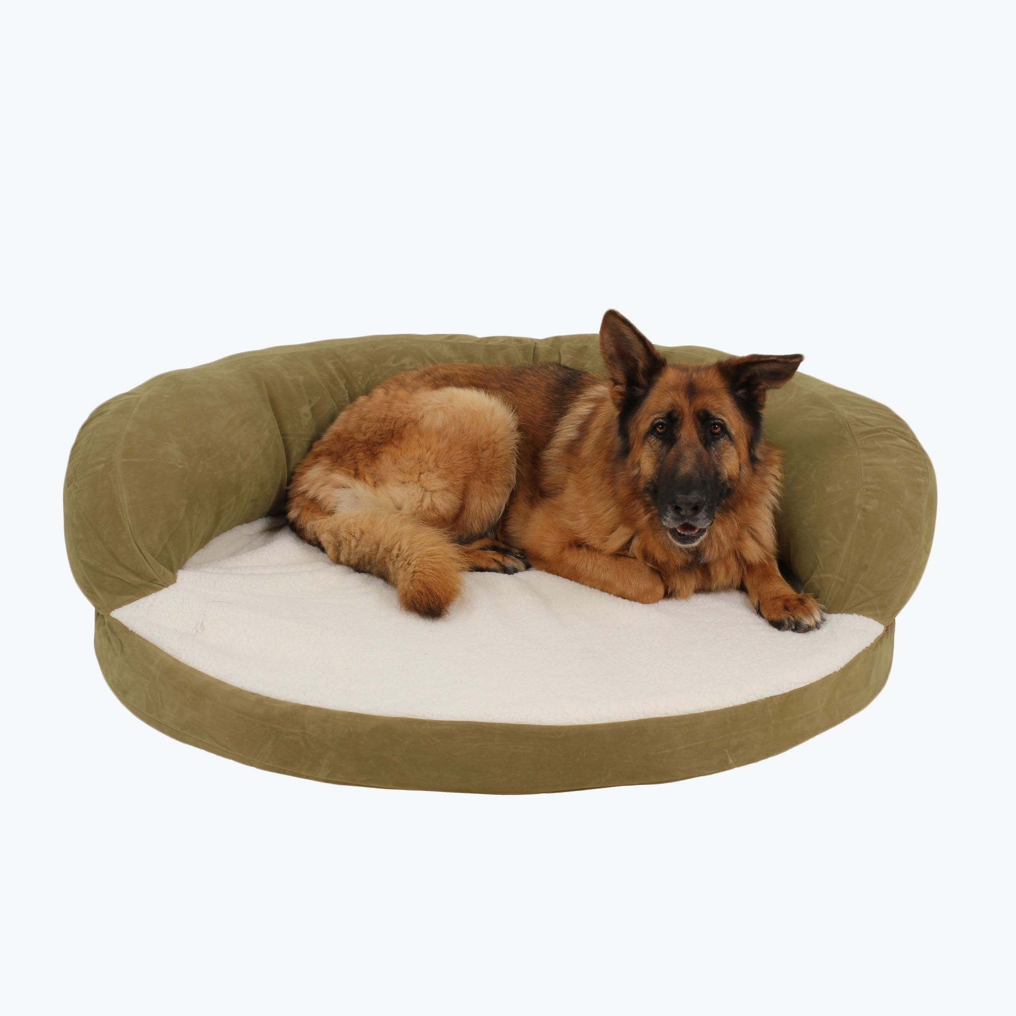 Ortho Sleeper Bolster Bed Bolster dog bed, Personalized