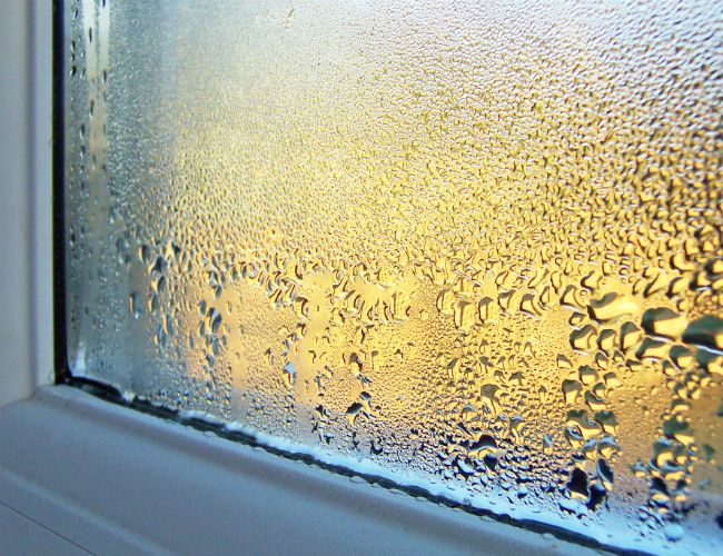 Solved What To Do About Condensation On Windows Window Condensation Winter Window Window Repair