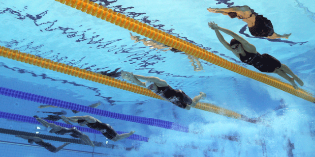 Olympic Swimming Pool Underwater swimming gif images | usa swimming - recognizing, responding