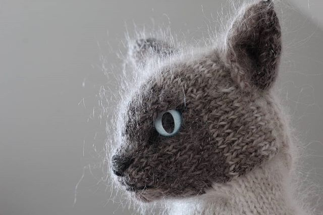 Hilde Dehaen Minimazzel Fotky A Videa Na Instagramu In 2020 Knitted Animals Knitted Cat Cats