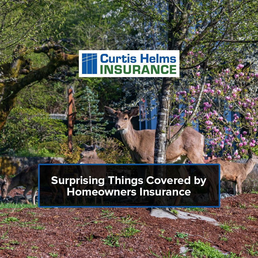 Pin By Curtis Helms Insurance On Insurance