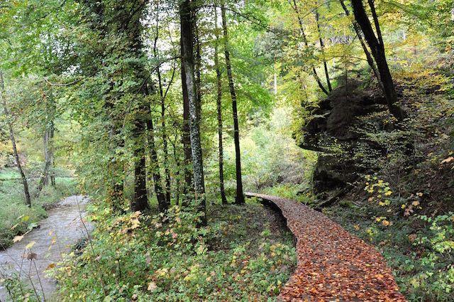 Bei Elfen und Feen in Luxemburg – eine Wanderung in der Kleinen Luxemburger Schweiz von Müllerthal nach Blumenthal – Charming Family Escapes