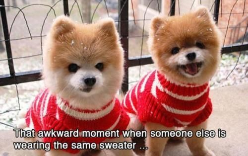 That awkward moment when someone else is wearing the same sweater...