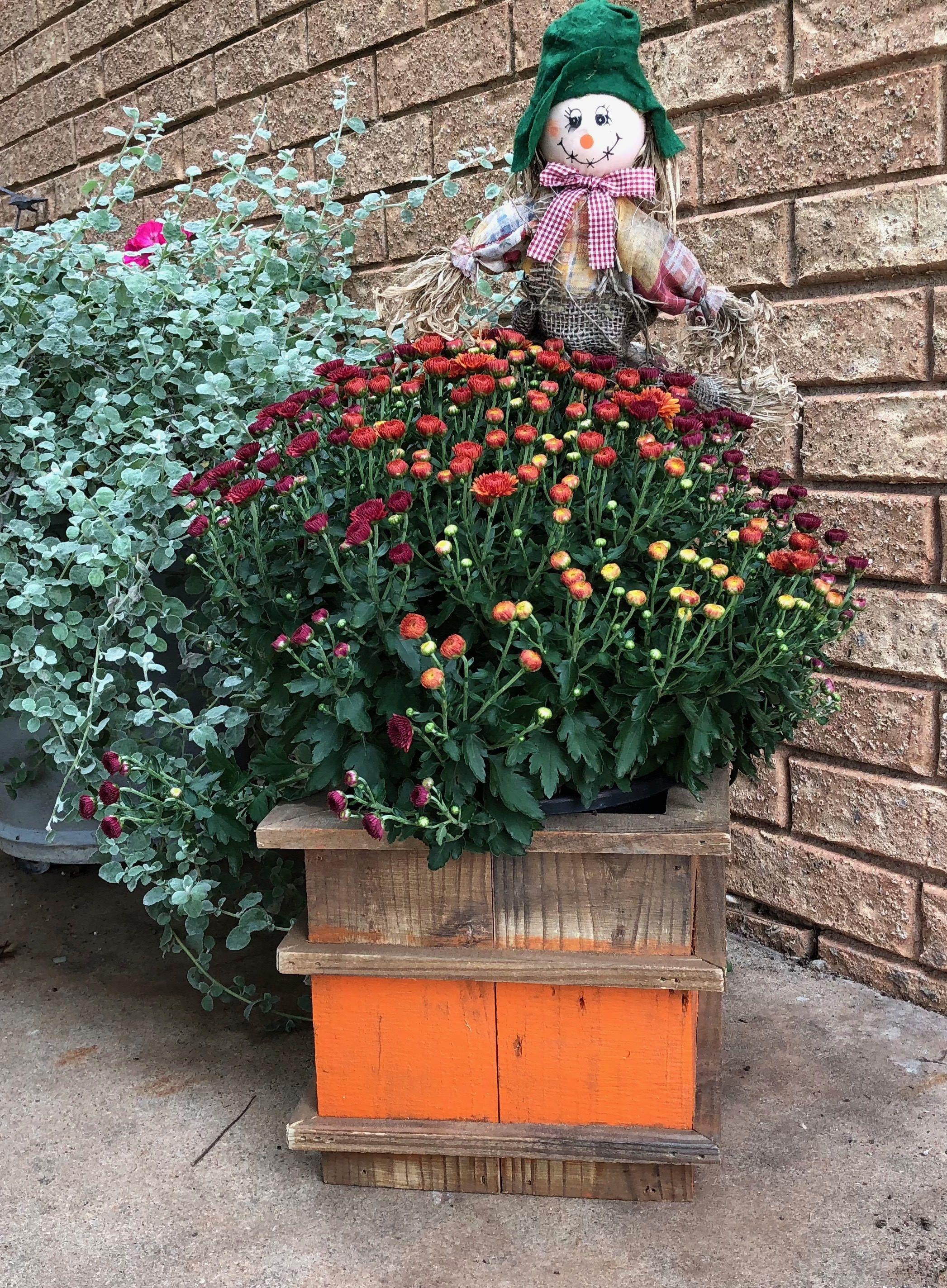 Rustic Flower Pot Holder, Farmhouse Decor, Boho Decor, Plant Holder ...
