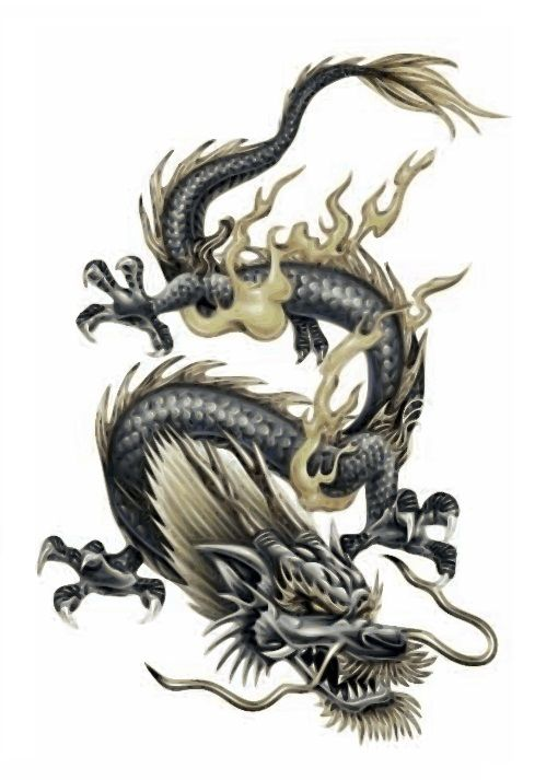 Chinese Dragon Tattoo Designs Tattoo Designs Chinese Dragon Tattoo Japanese Free Download Tattoo Tato Naga Gambar Naga Tato Tengkorak