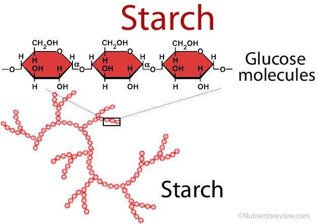 Starch Foods Digestion Glycemic Index With Images Starch