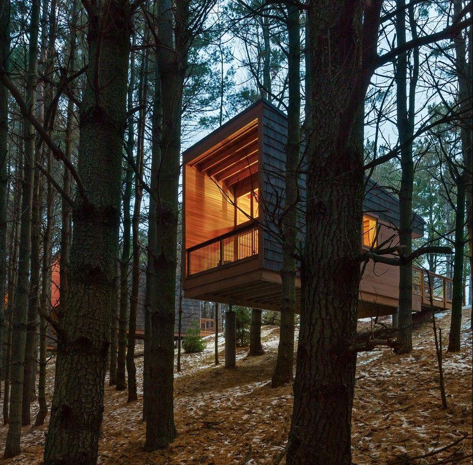 Container Housing Design: HGA Perches Cedar-clad Cabins On A Minnesota Hillside