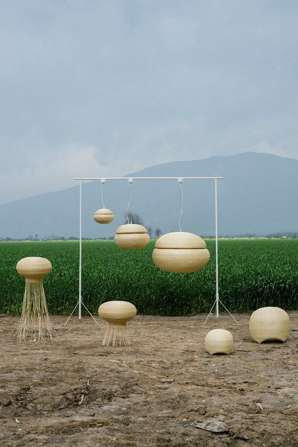 Medusa, Chinita, Bellota: lámparas inspiradas en la