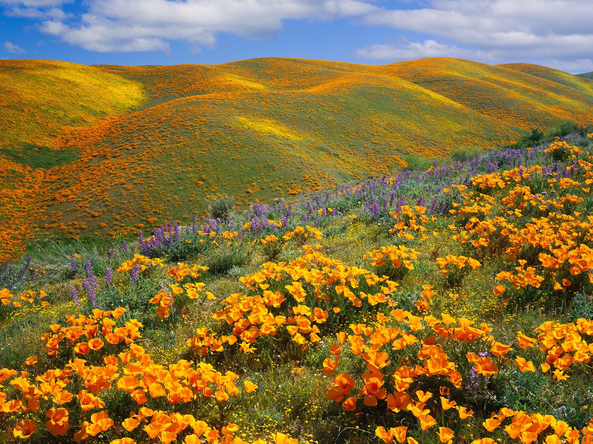 The 20 Most Beautiful Places In California Beautiful Places In