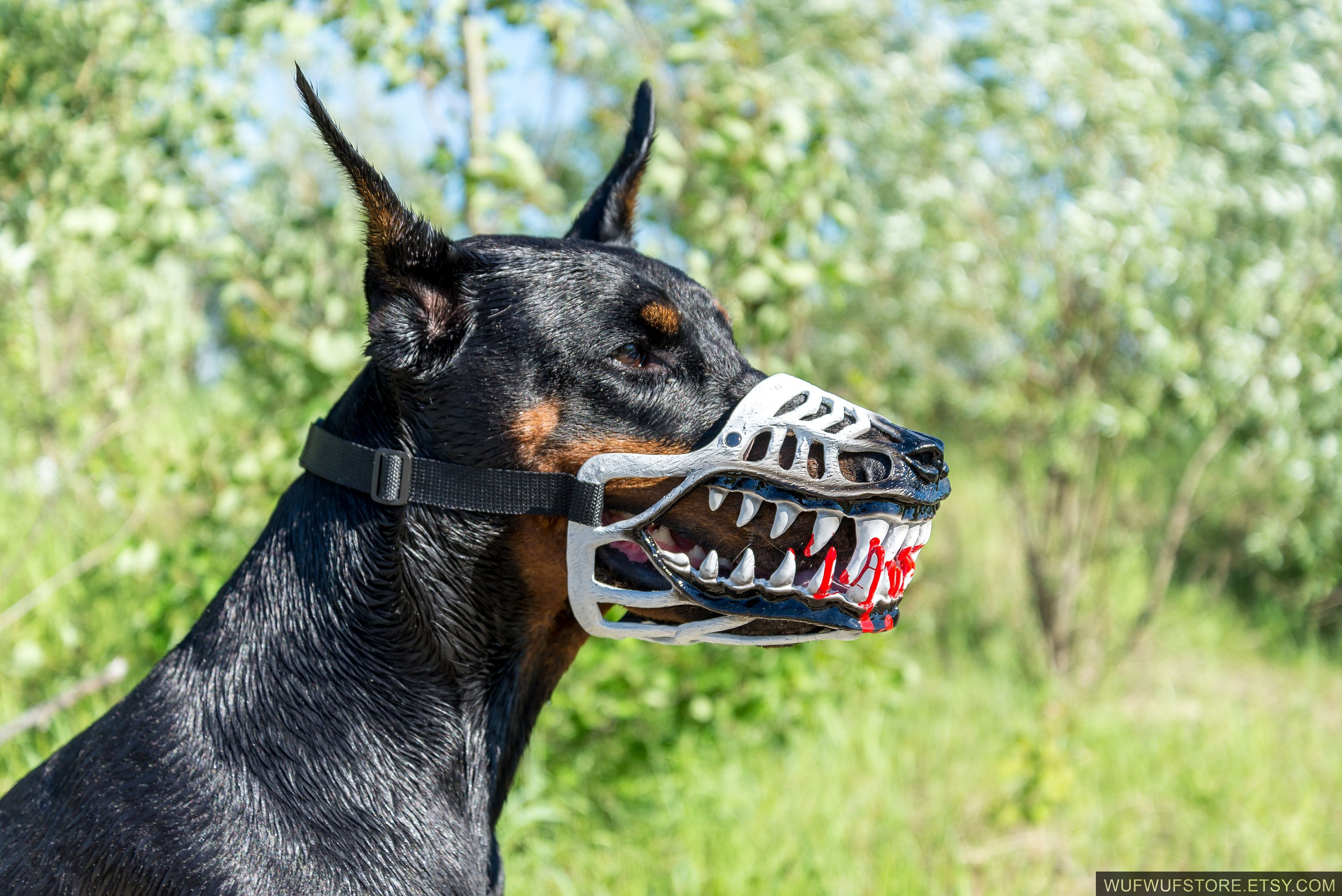 Werewolf Zombie Dogs Muzzle White Color Doberman And Other