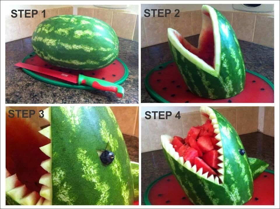 Melonenhai